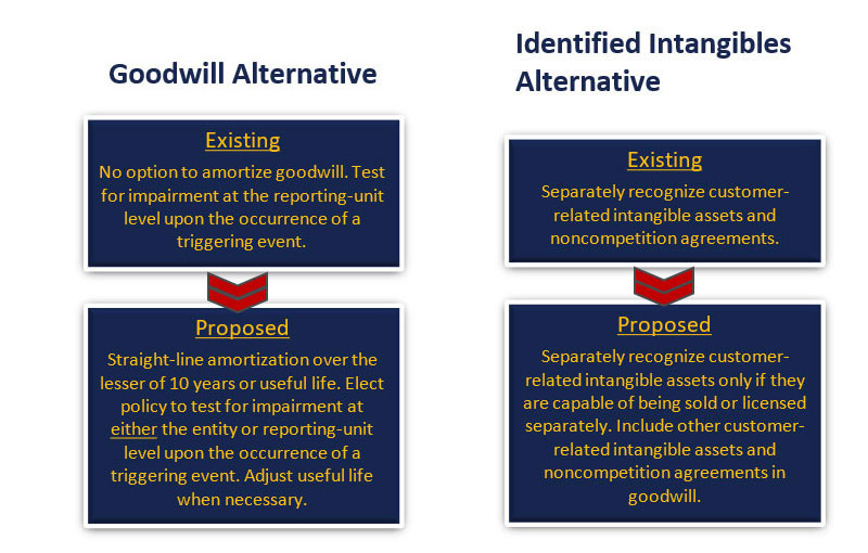 ASU identified intangibles alternative